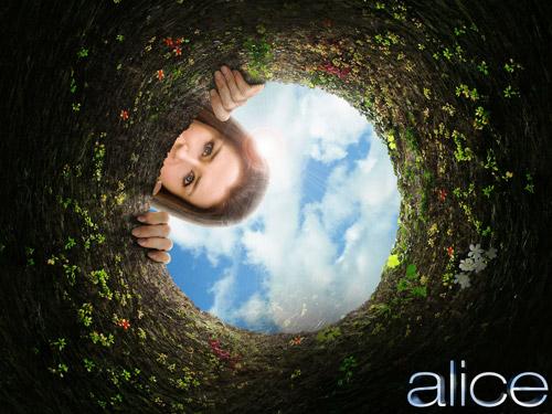 alice001