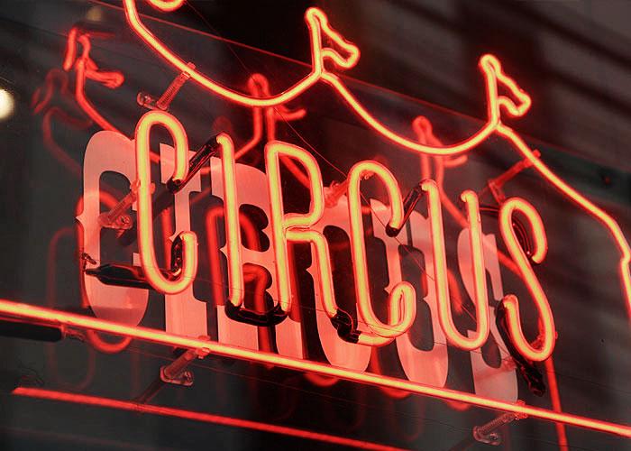circushair004