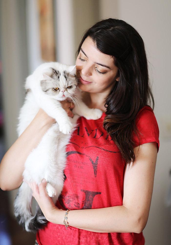 lookdodia253-kitty