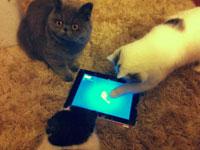 Leia também: 3 coisas legais de se fazer no iPad