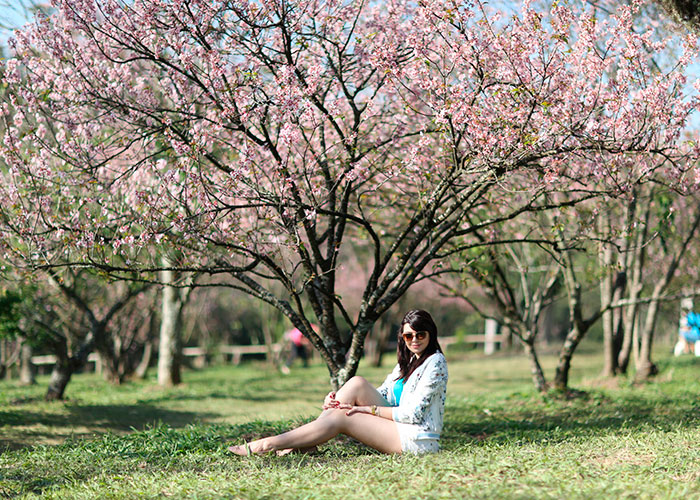 lookdodia312-cerejeira