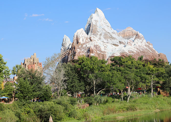 animal-kingdom-029