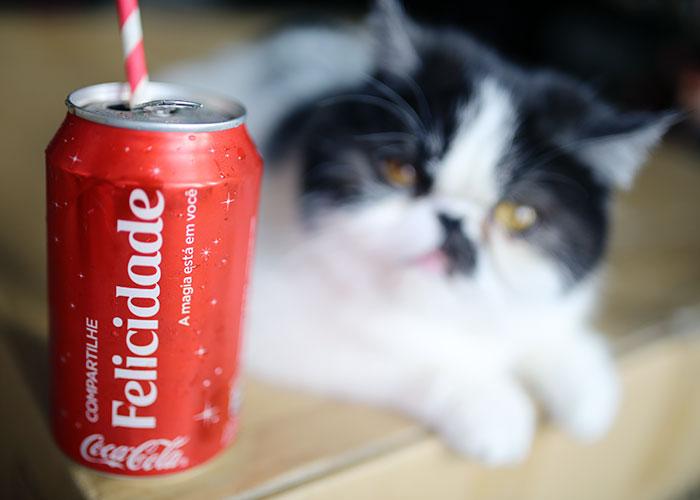 coca-cola-002