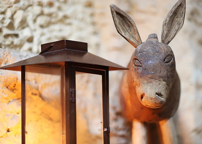 lookdodia347-burro
