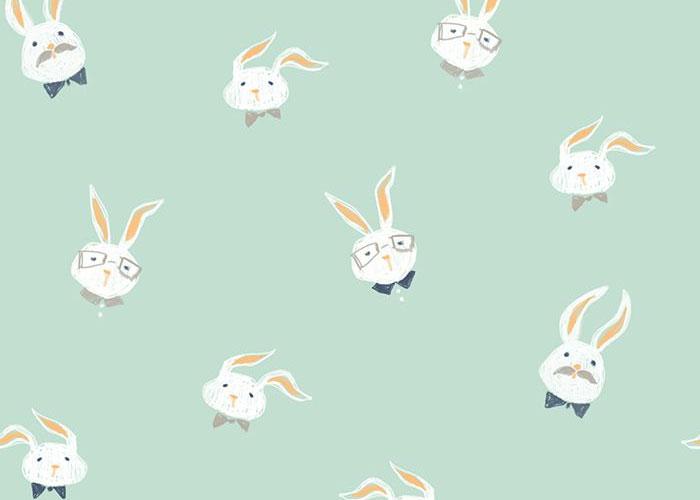 a-coelhos