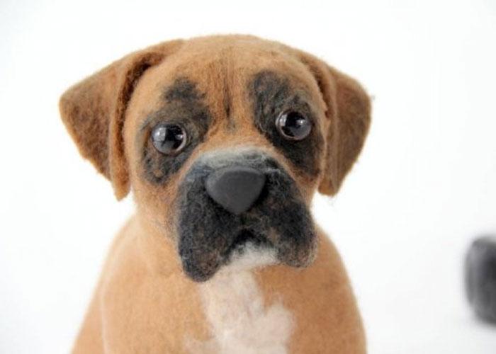inspiracao-cachorrosdepelucia-shelterpups-benjamin