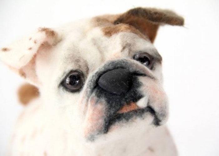 inspiracao-cachorrosdepelucia-shelterpups-brutus