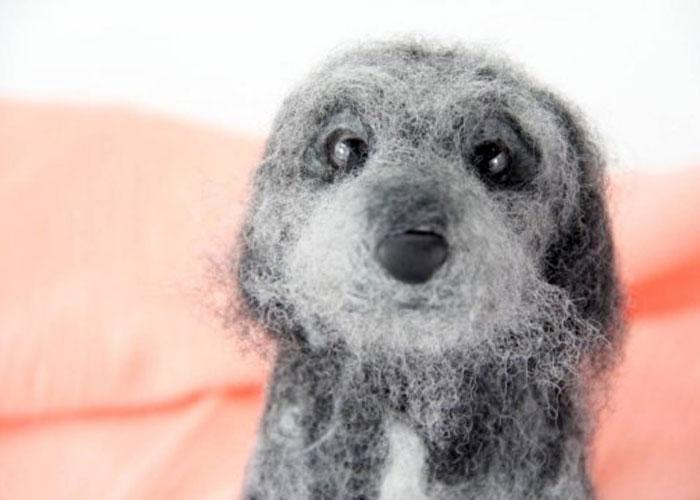 inspiracao-cachorrosdepelucia-shelterpups-maggie