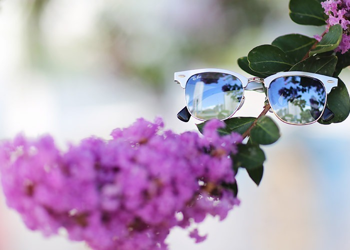 lookdodia352-oculos