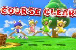 A Lua de Mel, Super Mario 3D World