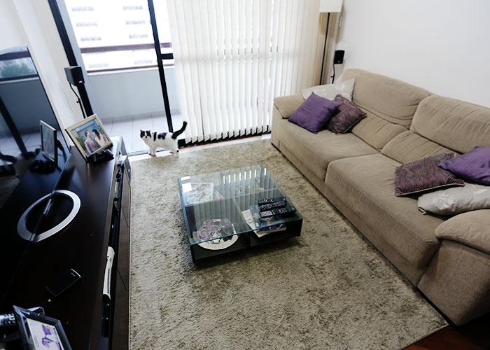 casa-lia-camargo