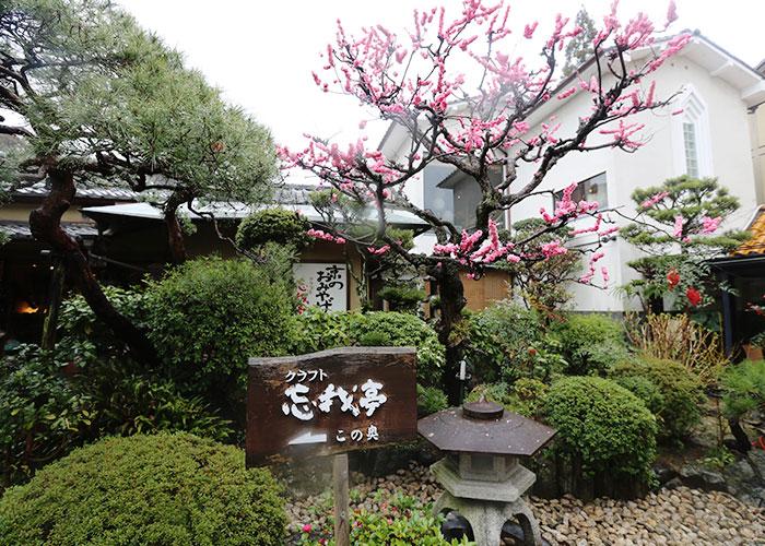 viagem-japao-quioto-032