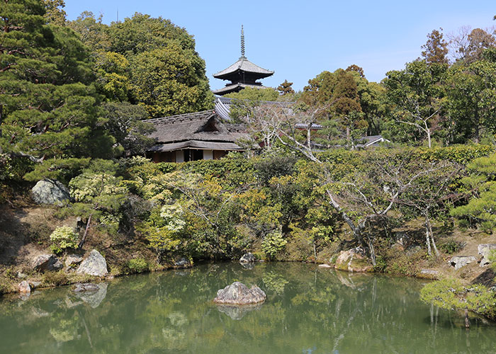 viagem-kyoto-036