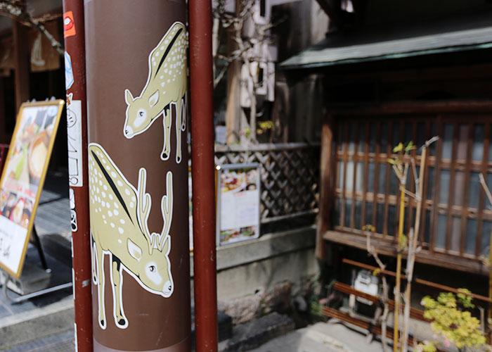viagem-japao-nara-012