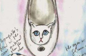 Melissa + Karl Lagerfeld (e a sapatilha de gatinho!)