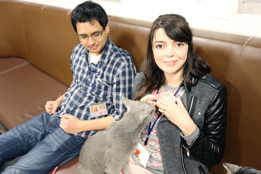 viagem-japao-cat-cafe-004