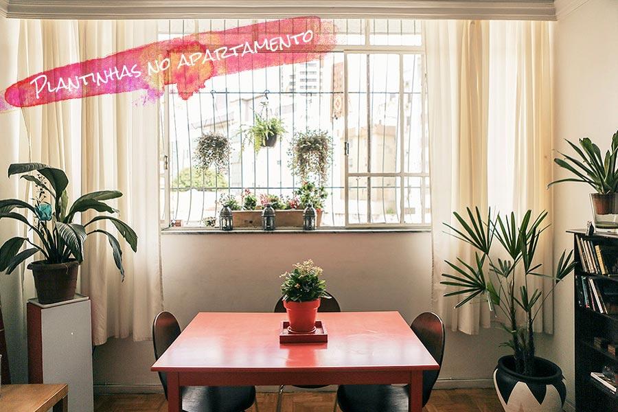 decoracao-plantinhas-no-apartamento-001