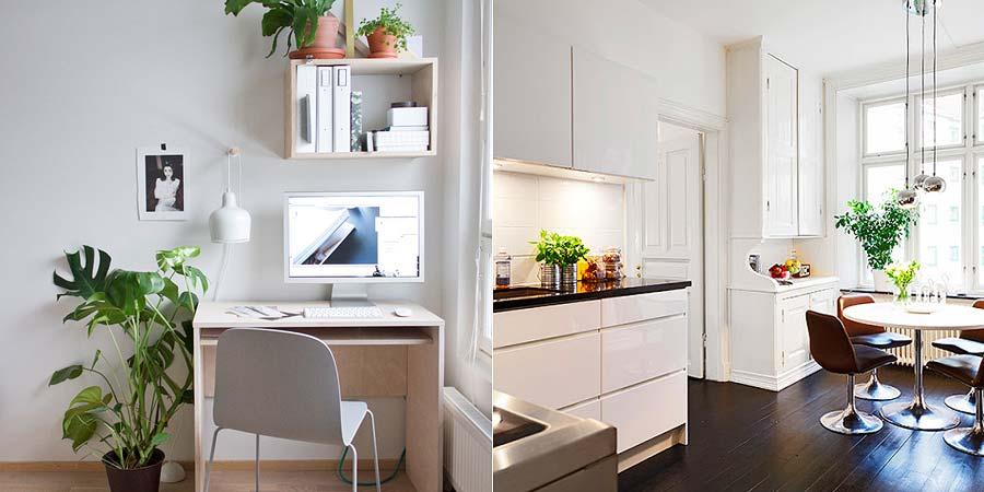 decoracao-plantinhas-no-apartamento-003