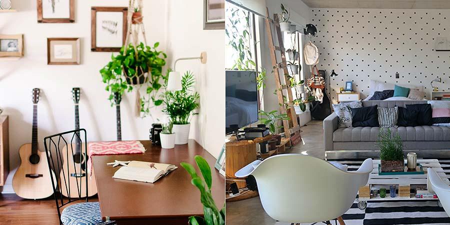 decoracao-plantinhas-no-apartamento-004