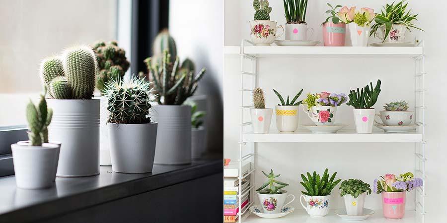 decoracao-plantinhas-no-apartamento-005