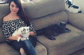 Vídeo – As leitoras perguntam: Tudo sobre os meus gatos #1