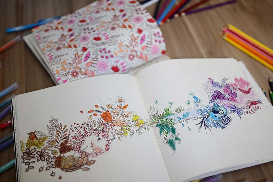 livros-de-colorir-para-adultos-004