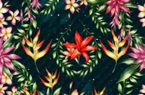 As estampas florais de Clara McAllister