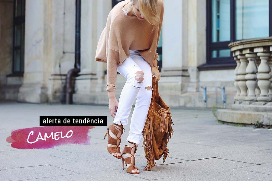 tendencia-camelo-001