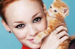 Delineado gatinho e gatinhos!