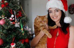 Vídeo – Minha decoração de Natal