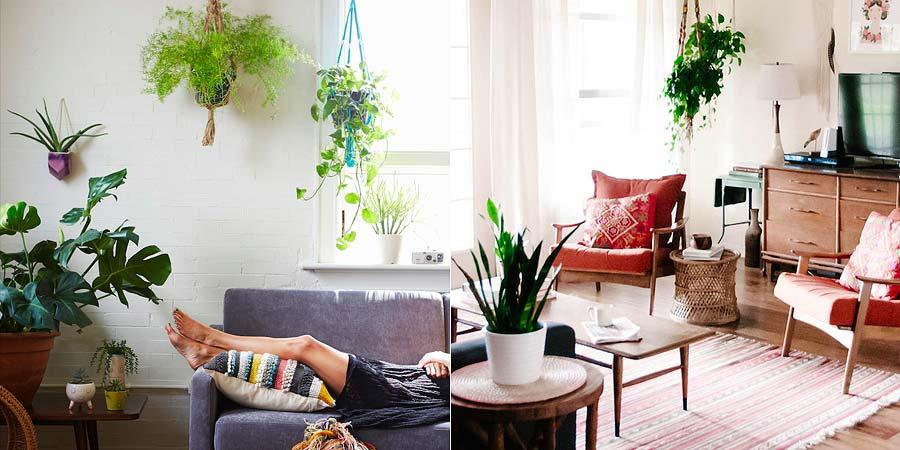 decoracao-suporte-macrame-plantas-004