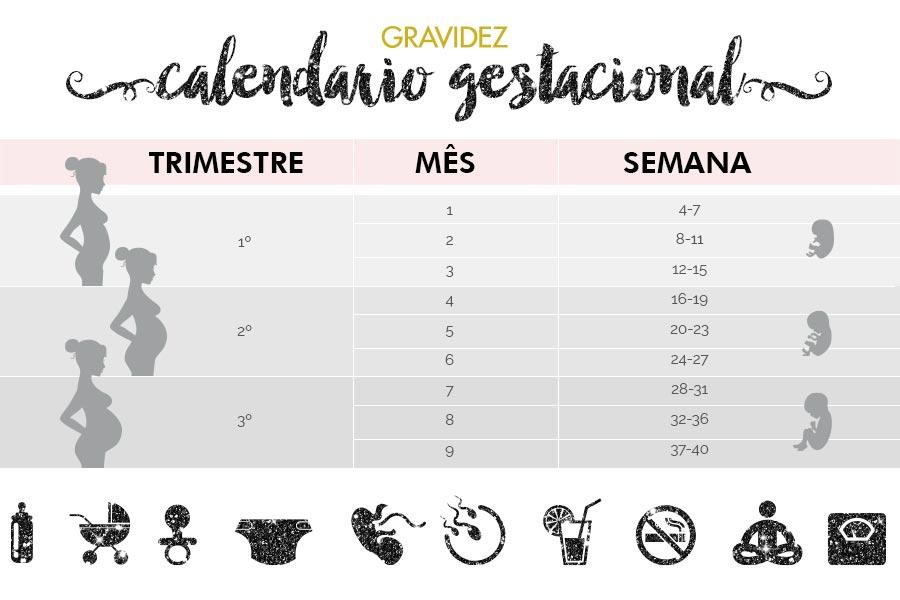 calendario-gestacional