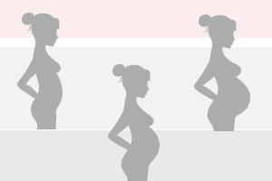 Calendário gestacional – Como calcular semanas, meses e trimestres da gravidez