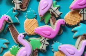Holly Fox e seus biscoitos divertidos