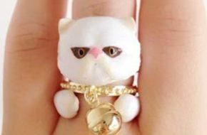 Os anéis de bichinhos da Mary Lou