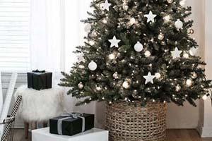 Decoração: Árvore de Natal