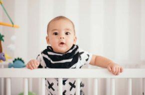 Ensaio de 6 meses do bebê