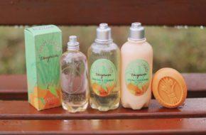 A fragrância fresca e cítrica de Capim-Limão Tangerina