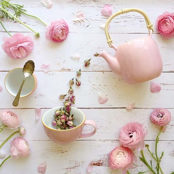 Jodianne E Suas Fotos Delicadas De Flores Just Lia Por Lia Camargo