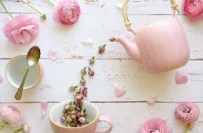 Jodianne e suas fotos delicadas de flores