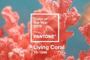 Living Coral é a cor de 2019